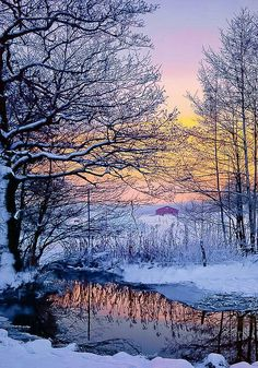 Sunset or sunrise? Winter Landscape, Landscape Photos, Landscape Photography, Winter Sunset, Winter Scenery, Winter Snow, Fall Winter, All Nature, Amazing Nature