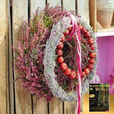 Im Herbst kommt das Jahr, was Blumen und Pflanzen angeht, zum Höhepunkt. Die letzten Blüten vor dem Winter sind besonders schick, Früchte bereichern die pflanzlichen Erscheinungsformen und selbst das Laub will mit Vielfarbigkeit nicht hinter der Leuchtkraft der Blüten zurückstehen. :-)