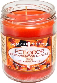 Pet Products By Royal - Pet Odor Exterminator Candle -  Pumpkin Spice, $6.99 (http://www.petproductsbyroyal.com/pet-odor-exterminator-candle-pumpkin-spice/)