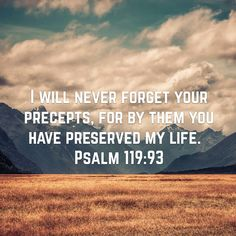 Psalms I love the LORD, because He has heard My voice and my supplications. Psalm 130, Psalms, I Love The Lord, Gods Love, Amplified Bible, Never Forget You, New King James Version, John 4, New International Version