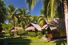 Bungalows Coco Loco Lodge in Puerto Viejo (Costa Rica)