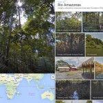Amazzonia: la foresta pluviale vista da Google Street View