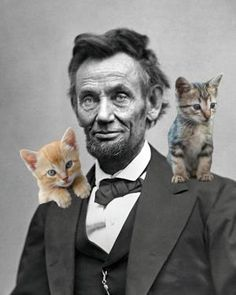 "Abraham Lincoln: Witty Quotations  ""No matter how much cats fight, there always seems to be plenty of kittens."""