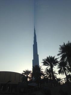 IMG_6064  IMG_6064 ..... Read more:  http://dxbplanet.com/dxbimages/?p=201    #Uncategorized #Dubai #DXB #MyDubai #DXBplanet #LoveDubai #UAE #دبي