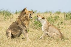 Conflict Photo by Mohammed AlNaser — National Geographic Your Shot