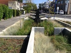 New Bioswales Bring the River Back to The City Portland, OR | via Greener Good