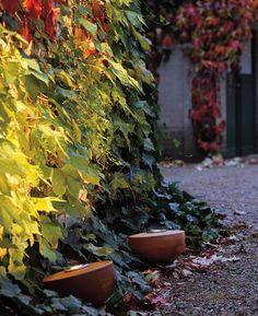 Gartenleuchten: Schönes Licht für Garten, Terrasse und Balkon: Natürlich…