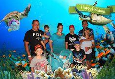 USHAKA Aquarium - SmileFlingr Happy Holidays, Aquarium, Pictures, Goldfish Bowl, Happy Holi, Aquarium Fish Tank, Aquarius, Fish Tank