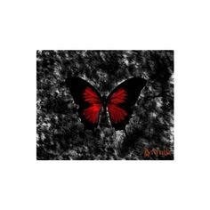Crimson Butterfly Wallpapers - Download Free Gothic Wallpapers, Photos, Pictures and Backgrounds found on Polyvore featuring polyvore, backgrounds, butterflies and animals