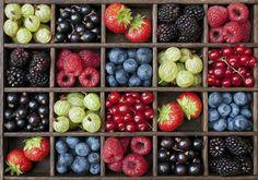 Nature's Harvest - Tim Gainey...