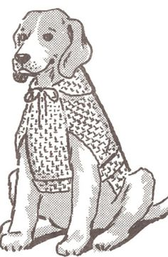 Dog Sweater hood coat puppy pet crochet pattern all sizes PetsCoat