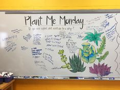 This year my classroom is covered in cacti and succulents, it's pretty great! If I had to be a plant, I would probably be a zinnia or a cockscomb celosia; zinnia because they're pretty hardy and cockscomb because they make a TON of seeds. I'd like to think I plant a little art seed of creativity and happiness within each of my students! 😊 Today was Plant Me Monday, if you were a plant what would you be and why? #whiteboard #whiteboardart #highschool #morgansadvisorycrew #art #artlife…