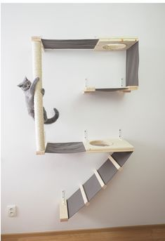 Cat climbing wall A puppy, or companion animal, is an animal kept primarily for a