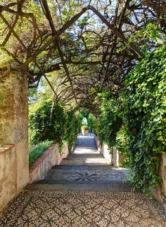 Garden of the San Domenico Palace Hotel in Taormina, Sicily