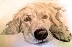 Glossy Print of Pencil Illustration Fenway by LaurenIllustrations, $10.00