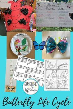These fun Butterfly Life Cycle activities, crafts and worksheets will encourage fun and allow teachers to pick and choose which activities to use with their kindergarten and first grade students. It includes a headband, paper plate life cycle craft, sequencing ideas and more. If you want to have a little fun with butterflies that speak to different modalities, then this is for YOU! Science Topics, Science Lessons, Science Activities, Science Ideas, Science Fun, Science Resources, Poetry Frames, Life Cycle Craft, March Themes