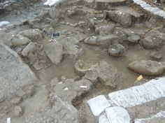 Archaeologists digging at the site of Tel Kabri in Israel have unearthed 3,700-year-old vessels of wine in a Canaanite palace storage room, making it the oldest known wine cellar in the Middle East.