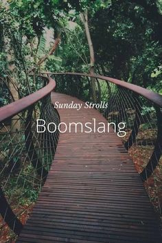 Steller is the best way to create, share and discover fun and inspiring travel stories. Garden Bridge, Lion, Deck, Sunday, Outdoor Structures, Outdoor Decor, Travel, Leo, Viajes