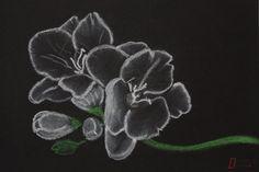 Voor mijn schoonvader een Fresia en voor mijn vader een Orchidee