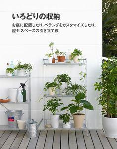 Houseware Special     Muji store net storage of Muji