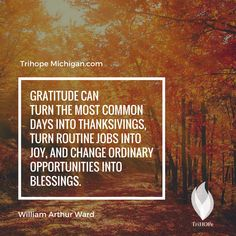 """Gratitude can turn the most common days into thanksgivings, turn routine jobs into joy, and change ordinary opportunities into blessings. - William Arthur Ward // TrihopeMichigan.com"