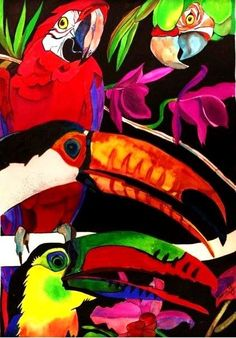 Macaws Galore