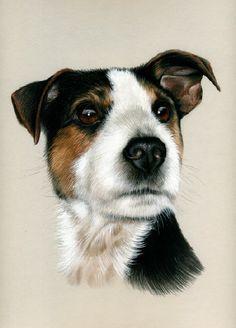 Dogs Terrier Irina Garmashova