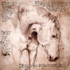 This 12x12 Thoroughbred is a detail of the Thoroughbred study, which comes with either Italian writing (backwards (!) the way Da Vinci wrote), or in English like this one.