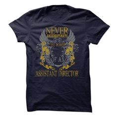 Never Underestimate The Power Of An Assistant Director T-Shirt Hoodie Sweatshirts oeo