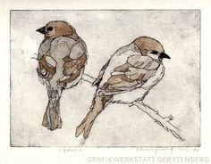 Two Sparrows // Original Etching by GerstenbergGrafik on Etsy, €79.00