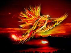 Spiritual Readings - Free Psychic Chat Tantra, Phoenix Symbolism, What Colors Mean, Mythical Birds, Rise From The Ashes, Phoenix Bird, Phoenix Rising, Free Psychic, Psychic Chat