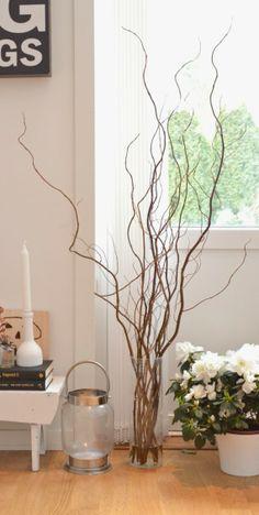 Salix Glass Vase, Living Room, Flowers, Home Decor, Wood Trunk, Vases, Decoration Home, Room Decor, Home Living Room