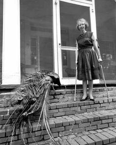 """Flannery O'Connor described herself as a """"pigeon-toed child with a receding chin and a you-leave-me-alone-or-I'll-bite-you complex. She is known for developing the """"grotesque"""" in Southern Gothic fiction. """"Her texts usually take place in the South and revolve around morally flawed characters, while the issue of race often appears in the background."""" (wiki)"""