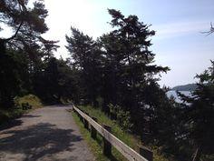 "The ""bend in the road"" at Point Pleasant Park. ""Halifax, Nova Scotia in L.M. Montgomery's Island Scrapbooks."" http://sarahemsley.com/2014/09/09/halifax-nova-scotia-in-l-m-montgomerys-island-scrapbooks/"