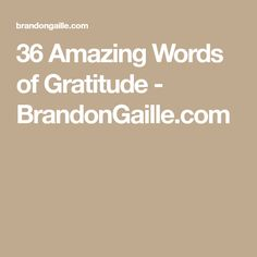 36 Amazing Words of Gratitude - BrandonGaille.com