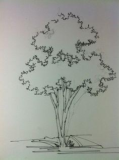 Résultat d'images pour tree sketch