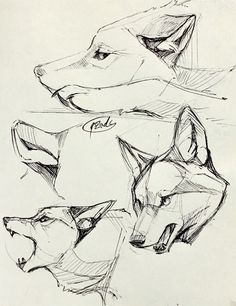 Animales animals in 2019 loup dessin, art dessin, croquis an Animal Sketches, Art Drawings Sketches, Animal Drawings, Wolf Drawings, Wolf Sketch, Poses References, Drawing Techniques, Drawing Tutorials, Art Tutorials