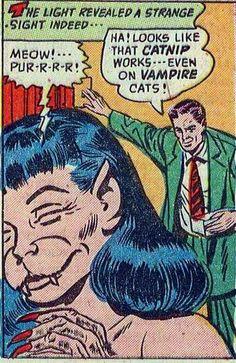 vampire cats