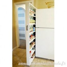 Portable wall shelf spice storage? pantry. next house