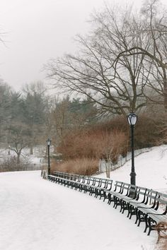 Snow in Central Park featured by top New York City blog York Avenue New York Snow, New York Winter, Central Park Nyc, New York Central, Manhattan Times Square, Lower Manhattan, Lake George Village, New York City Photos, Places In New York
