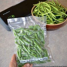 Freezing Green Beans With or Without Blanching, Step by Step Freezing green bea. Freezing Green Beans With or Without Blanching, Step by Step Freezing green beans from the garden Freeze Fresh Green Beans, Preserving Green Beans, Can Green Beans, Garlic Green Beans, Green Beans And Potatoes, Frozen Green Beans, Freezing Green Beans, Freezing Kale, Kitchens