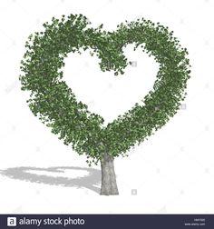 Stock Photo - Heart tree, isolated on white background Heart Tree, Fa, Photo Heart, Pop Up, Trees, Symbols, Stock Photos, Illustration, Popup