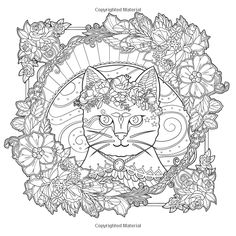 Amazon.com: Mystical Cats in Secret Places: A Cat Lover's Coloring Book (9781626923959): Honoel: Books