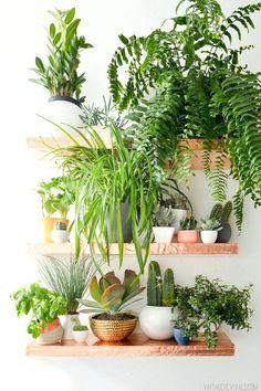 Large Indoor Plant Pots For Sale Indoor Herb Pots Coisas Lindas Da Semana 32 Indoor House Plantsindoor Indoor Plant Pots Online Uk #largeindoorhouseplants