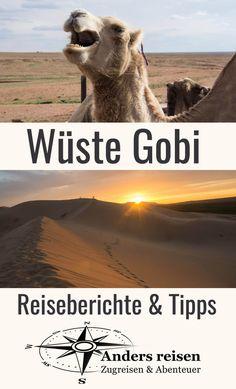 Die Wüste Gobi (Mongolei) ist beeindruckend. Reiseberichte & Tipps für Deine eigene Reise in die Wüste Gobi findest Du im Beitrag. #mongolei #abenteuer Dubai, Middle East, Asia, Highlights, Movie Posters, Movies, Trans Siberian Railway, Mongolia, Travel Report