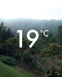 Nossa que diferença de hoje de manhã. Vai lá no meu #snapchat pra ver! / What a difference a few hours make!  apmacedo_br #weather #instaweather #foggy #afternoon #winter #countryside #riointerior #serraacima #errejota #inverno #BalaiodeEstiloS
