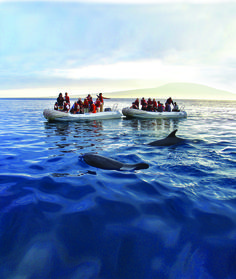 Wonders of the Galapagos | Enjoy a wide range of on-board activities, including stargazing, whale watching and an equator-crossing celebration - http://www.abercrombiekent.com.au/ecuadorandgalapagosislands/itineraries/wonders-of-the-galapagos.cfm