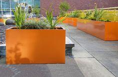 RAL 2003 [Pastel orange] for Manchester University