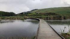 Bay News, Peaceful Places, New Zealand, Park, Parks