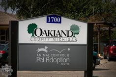 Oakland County Animals Safe After Fire at Pet Adoption Center